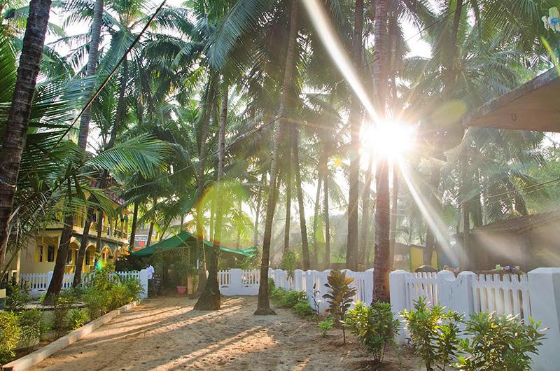 Pensjonat w Arambol, Goa