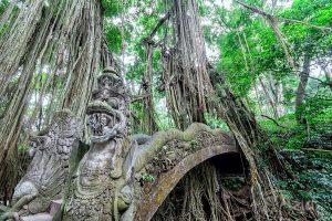 Święty Małpi Las, Ubud, Bali