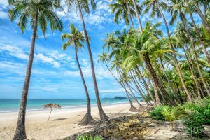 Plaża Ngapali